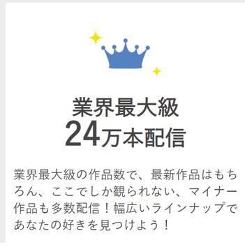 ビデオマーケット24万本
